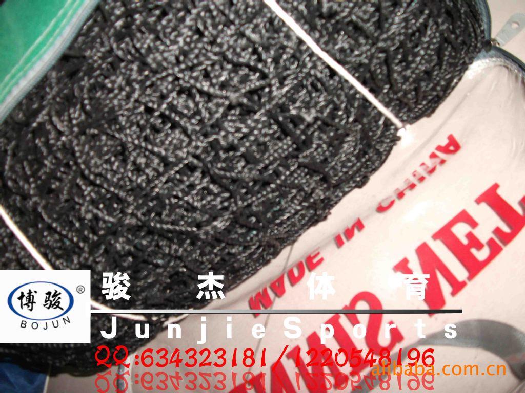 【乙烯网球网网球网v乙烯专用网体育器材厂销王蔷网球写真图片