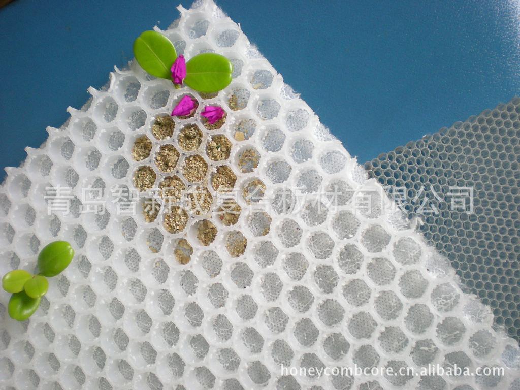 供应 装活性碳粉层用PP12塑料蜂窝板骨架 防潮抗腐易粘合