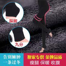 【伙拼】防经纶高密棉线大码加厚打底裤 厂家批发