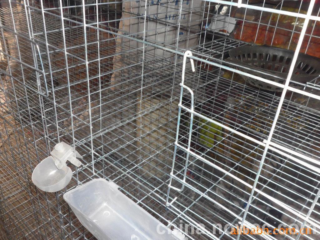 供应鸽笼子 鸽子笼 养殖 场专用鸽笼 整套鸽笼图片