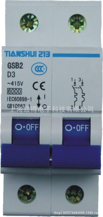 天水二一三GSB2-63H  C型微型断路器