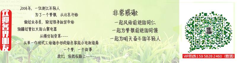 工厂批发 迷你印花电饭煲 学生1L小电饭锅 多功能电煮锅 源头工厂