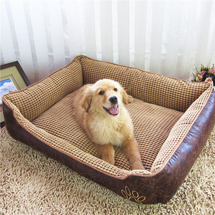 What Is The Best Dog Bed For A Labrador