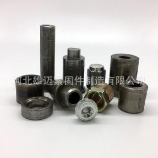 大量生产 各种冷镦非标件 不锈钢冷镦非标件 微型冷镦非标件